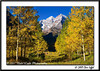 _MG_6707_CO_Fall_0907-RGB