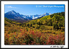 _MG_6991_CO_Fall_0907-RGB2