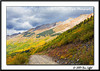 _MG_7313_CO_Fall_0907-RGB2