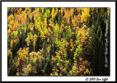_MG_7542_CO_Fall_0907-RGB2