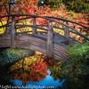 Ft Worth Japanese Garden 112019-16