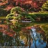 Ft Worth Japanese Garden 112019-9