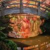 Ft Worth Japanese Garden 112019-15