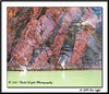 IMG_1037-RGB2