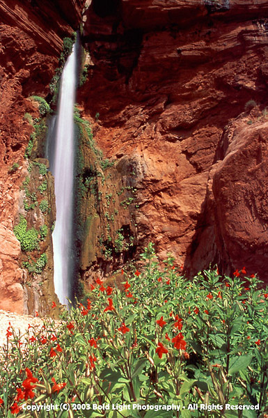 Grand Canyon G03