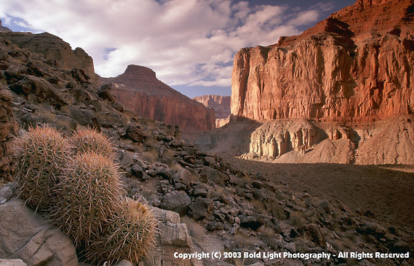 Grand Canyon B02
