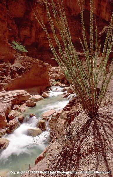 Grand Canyon F02