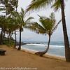 Maui Landscape Mamas Fish House