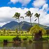 Maui Landscape Sugar Plantation