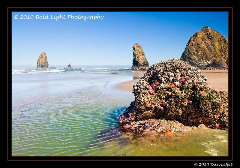 Oregon coast - July 2010, Canon Beach