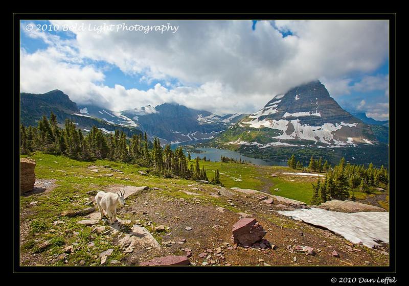 Glacier National Park - July 2010 , Hidden Lake area