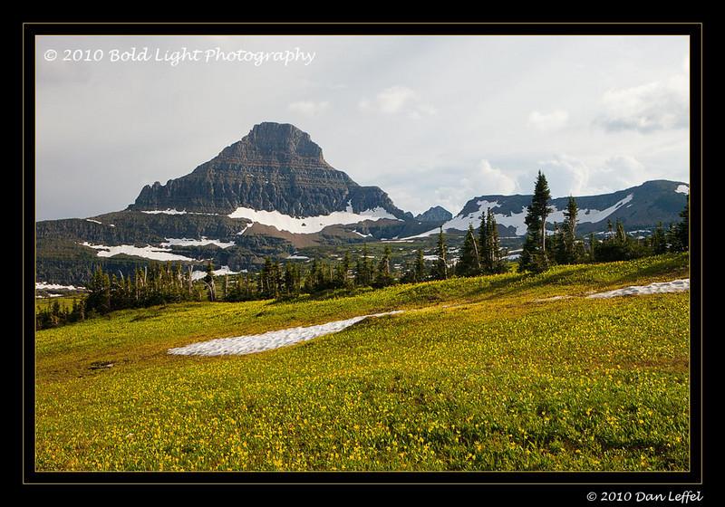 Glacier National Park - July 2010 Logan Pass area