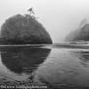 Oregon Foggy Coast