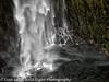 Oregon Cascades Salt Creek Falls Details