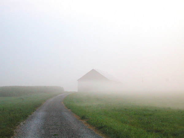 Foggy view of a barn at the end of a gravel road in the Kentucky Bluegrass.  One of the grand prize winning photographs on NikonNet.