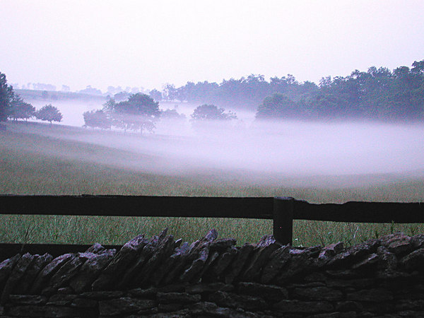 Foggy Dawn in the Kentucky Bluegrass,  A view of the beautiful rolling fields and forest.