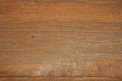 Stock image of texture and patterns in wood.  Photographed in the Lower Howards Creek Nature and Heritage Preserve in the Bluegrass region of Kentucky USA.