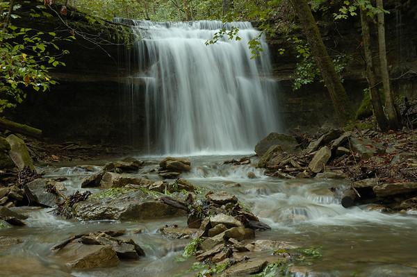 Waterfall on Trimble Creek,in the Lower Howard's Creek Nature and Heritage Preserve.