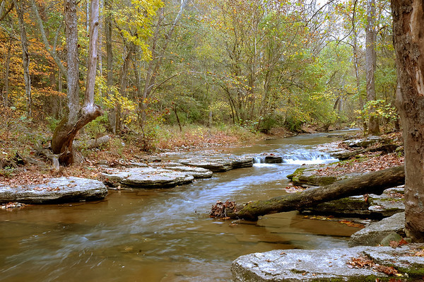 Stock image of Lower Howard's Creek Nature and Heritage Preserve in the Bluegrass region of Kentucky