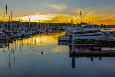 Monterey Municipal Marina Sunset