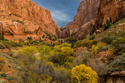 Autumn in Kolob Canyons