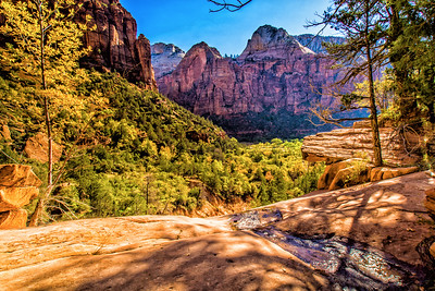 Upper Emerald Pool Area Zion National Park