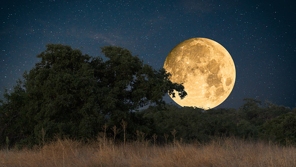 Harvest Moon September 2019