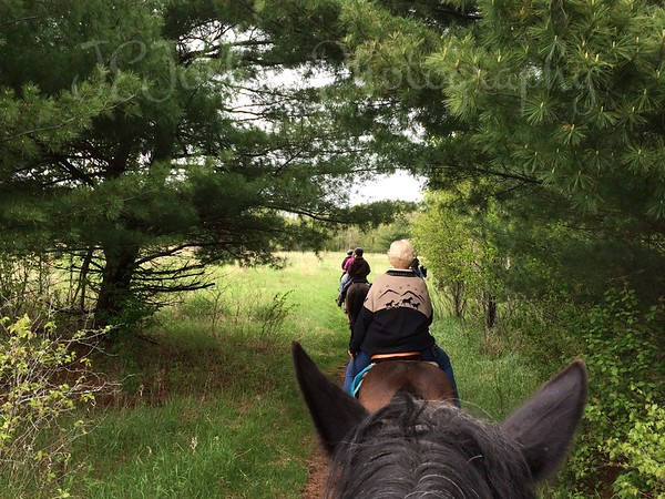 Wild River State Park, Trail Riding