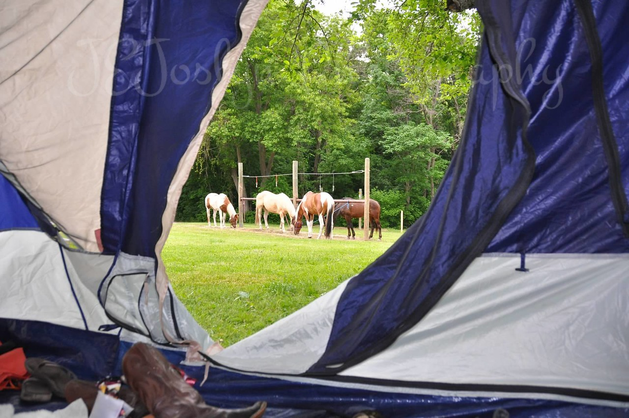 Forestville State Park - trip with Bunker Staff and Horses, photo by Stacy