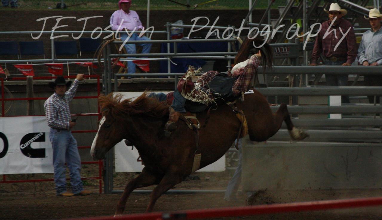 Hamel Rodeo - July 2009