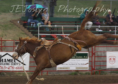 Hamel Rodeo - July 2009