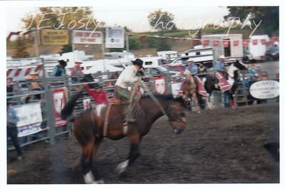 Hamel Rodeo.  Hamel, Minneosta, 2008