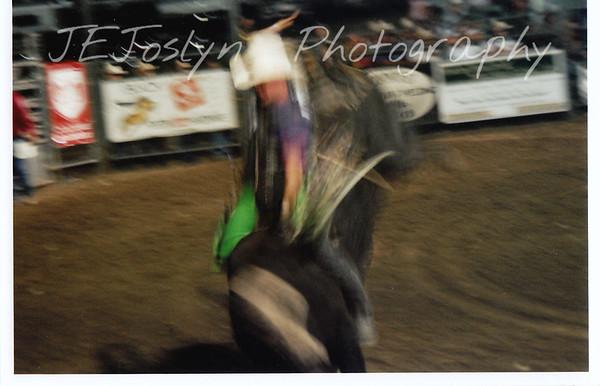 Hamel Rodeo-2008