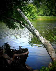 Birch, river, Adirondack chair, all pull together making a calming place for the home owners.