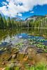 Nymph Lake, Rocky Mountain National Park, CO.