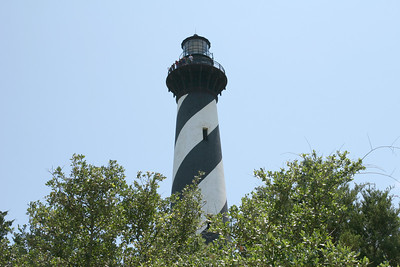 Cape Hatteras lighthouse with trees in the forground