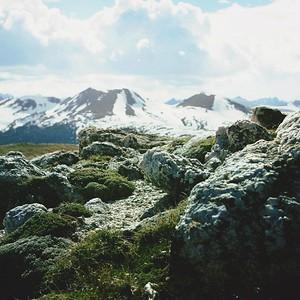 A Sitting Stone Gathers Moss