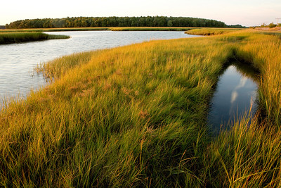 Photographs of the Scarborough Marsh in Scarborough, Maine.
