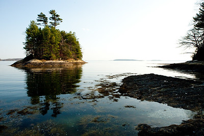 Wolfe's Neck State Park, Freeport, Maine.  Photograph by Jeff Scher