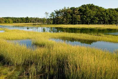 Scarborough Marsh, Scarborough, Maine