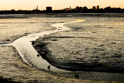 A view of Portland Maine's Skyline and Back Cove at Low tide and sunrise on 1.10.2008.  This view is seen from Baxter BLVD.