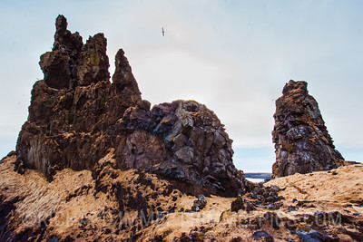 Cliffs of Dritvik, Snæfellsjökull National Park, Iceland