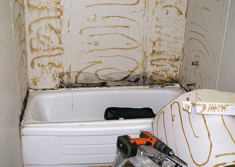The tub surround is now off the walls. You can see parts of it on the lower right corner of the image.<br /> <br /> You can also see that on the back wall the mold was heading up the wall.