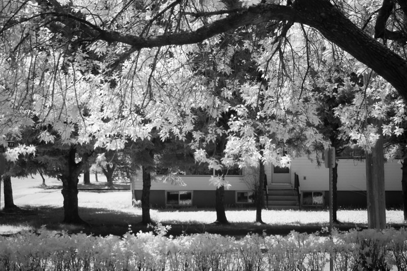 10 seconds at F2.8 and 400 iso. Canon 7D, Sigma 50mm 2.8 lens with a Hoya R72 IR filter. Shot this through the kitchen window.