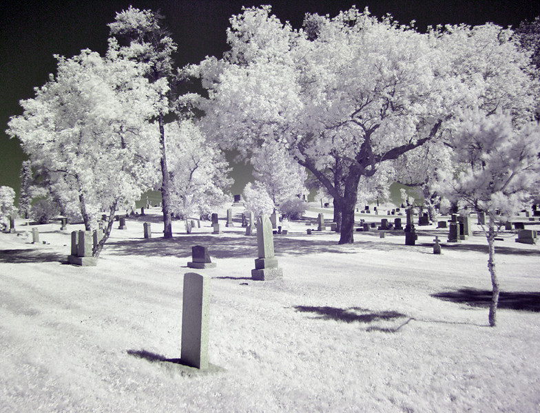 Local Cemetary #4