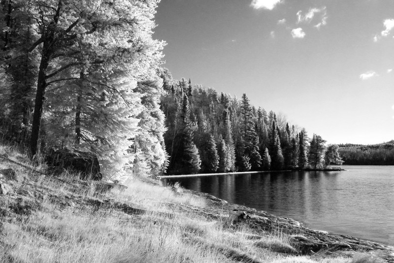 Another part of the shoreline of Ghost Lake taken with a modified Canon G5.