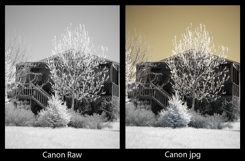 A comparison of a Infra Red photo using the Canon 40D, Sigma 50mm 2.8 lens, and a Hoya R72 IR filter.<br /> <br /> As it says below the two photos, the one on the left is from the Raw file, where as the photo on the right was from the jpg file.<br /> <br /> Minimal PS work done.