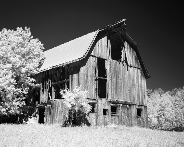 Canon 7D, Tamron 17-50mm lens with a Hoya R72 IR filter.