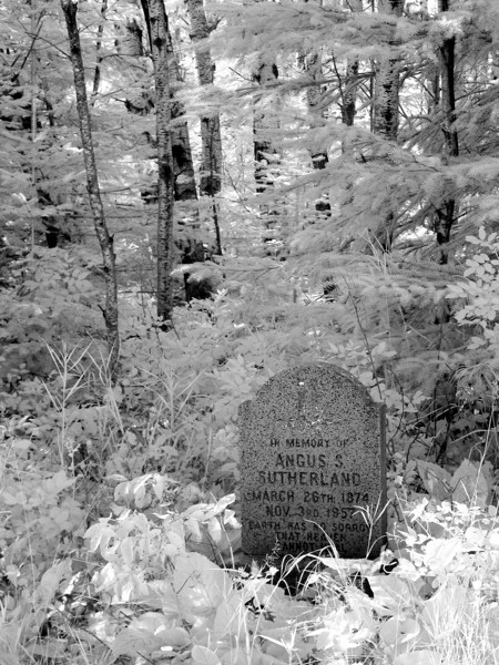 IR photo of a grave I found in the forest.<br /> <br /> Modified Canon G5.