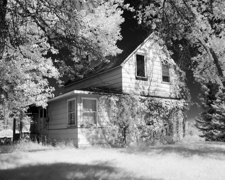 The Findlay homestead in infrared.<br /> <br /> Modified Canon G5.
